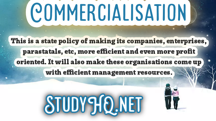 Commercialisation | Definition