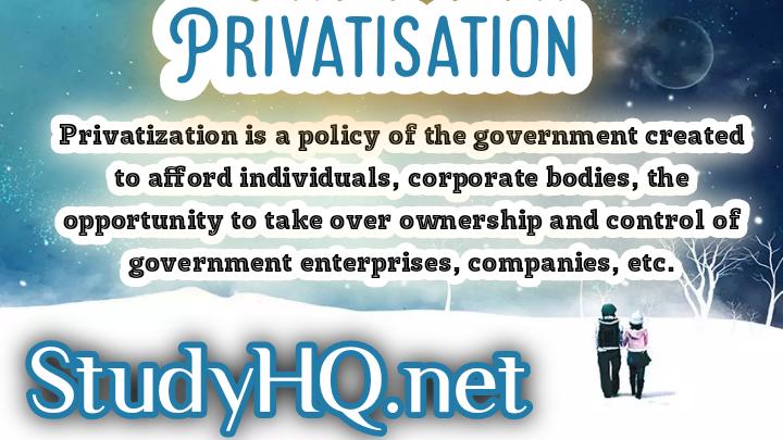 PRIVATISATION | Definition